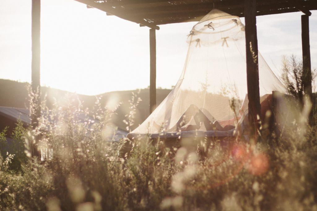 5 Tipps für einen genussvollen Sommer auf ayurvedische Art